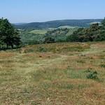 Heide- und Talblick vom Adlerdenkmal an der Hiwweltour Heideblick