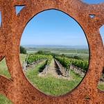 Winzeralm und Schönste Weinsicht 2016 Rheinhessen - Hiwweltour Heideblick