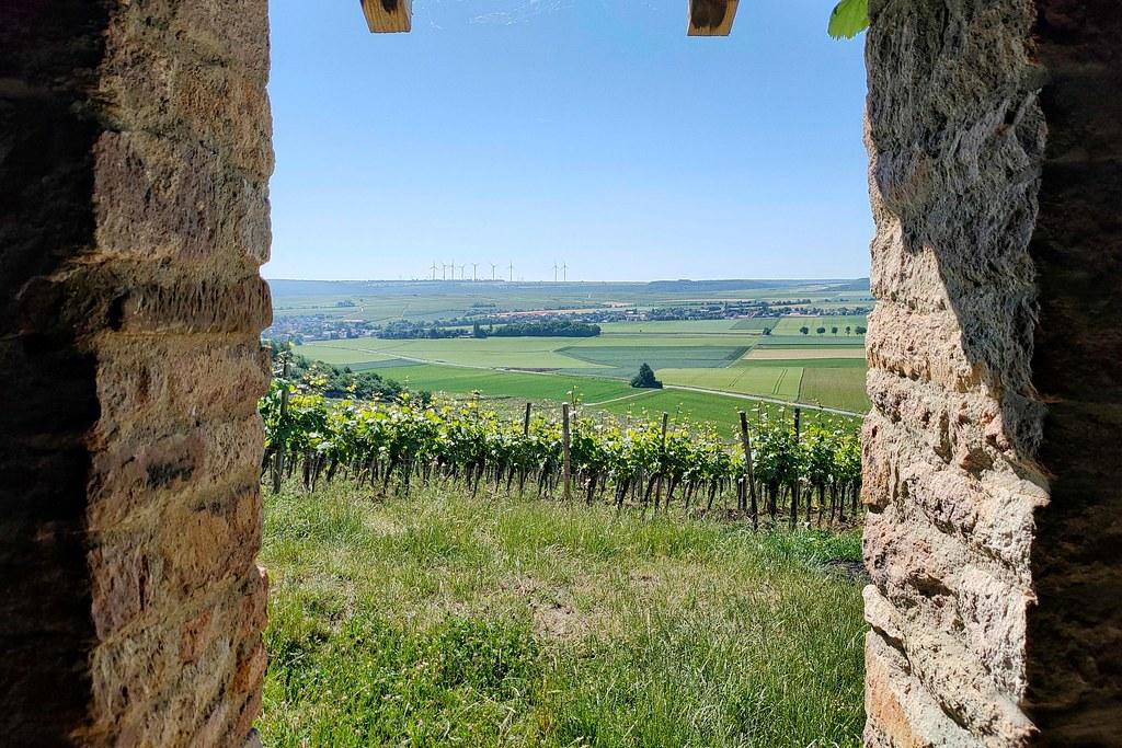 Wingertshäuschen vom Weingut Wagner-Stempel - Hiwweltour Heideblick