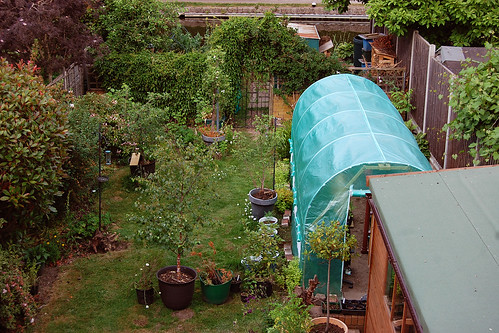 Looking Down on the Back Garden - June 2021