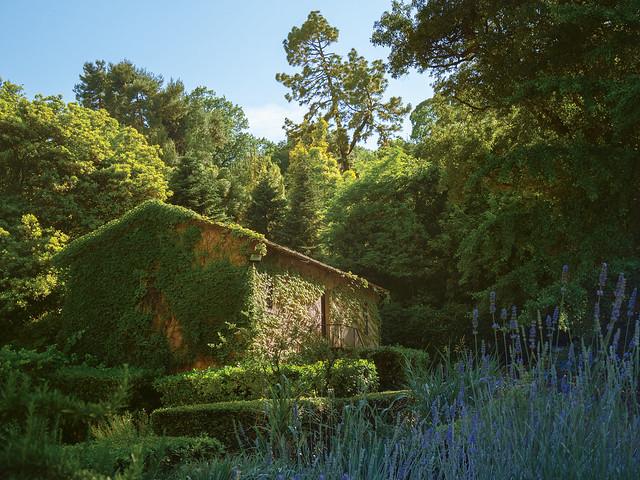 La casetta nel bosco...orto botanico, Roma