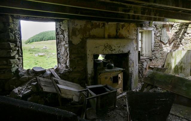 Old derelict farm cottage. (Inside looking out.)