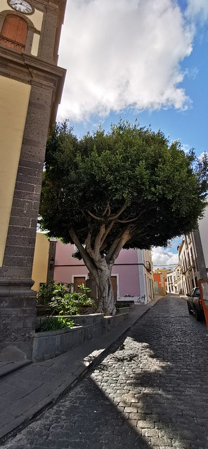 exterior Iglesia Matriz de Santa María de Guía Calle Luis Suárez Gran Canaria