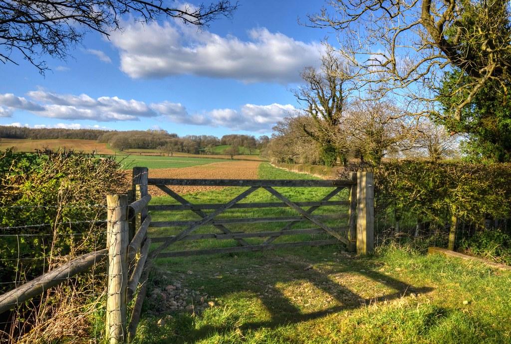 Farm gate near the Purser's Hills, Northamptonshire (Explored)