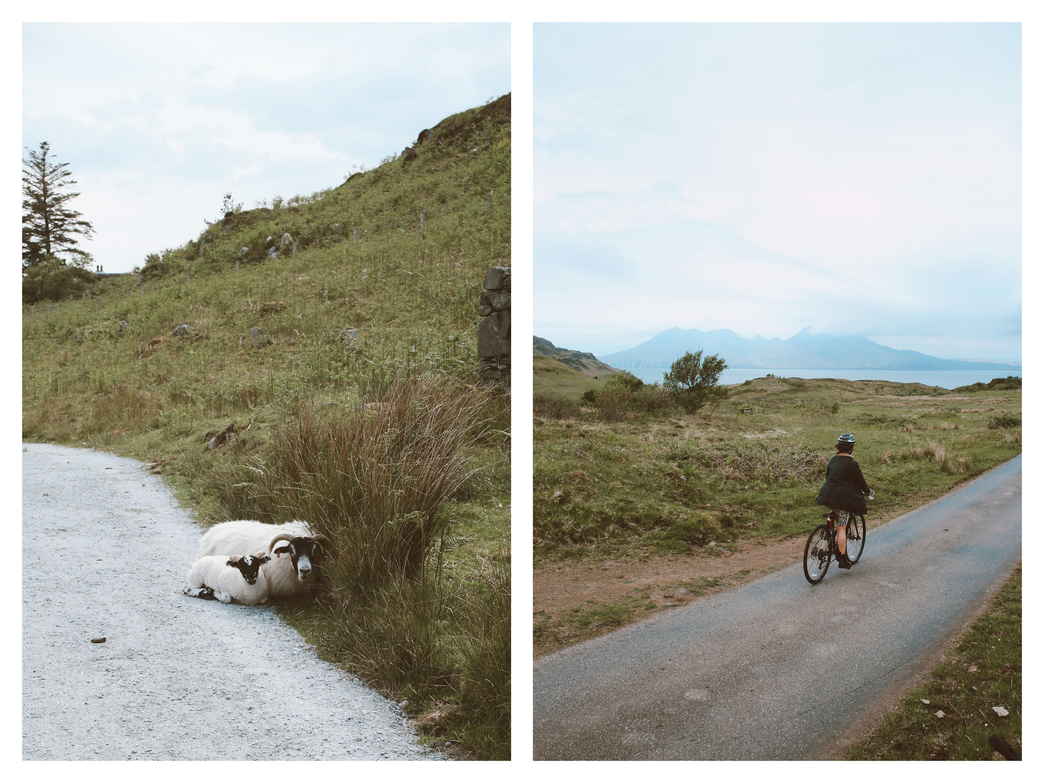 The Little Magpie Scotland Guide Road to the Isles Mallaig (5)