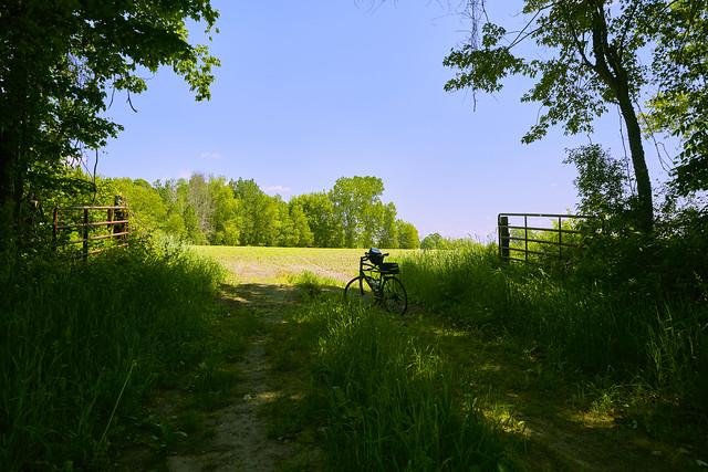 029315a- Taking A Break By A Gate Along The Musketawa Bike Trail