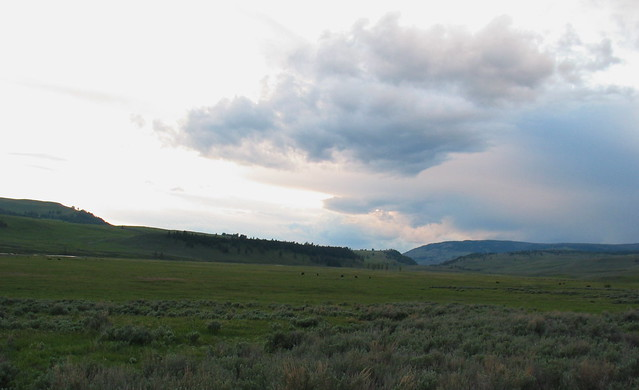 Cloudscape in Lamar Valley