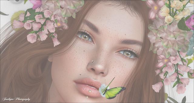 #75 Butterfly, Butterfly