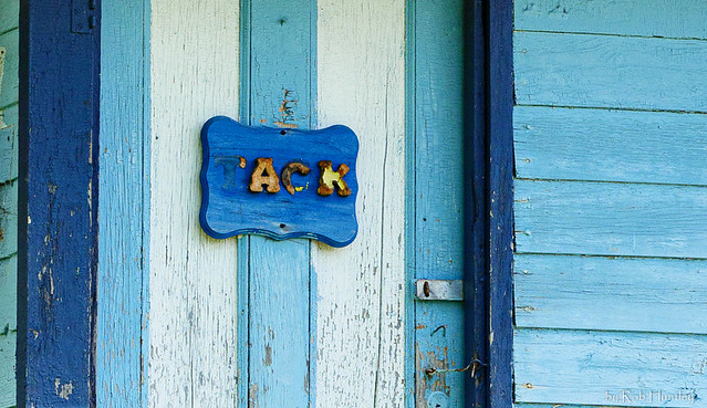 Blue door of old shed used for tack storage