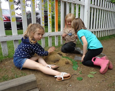 creating a house for a toad