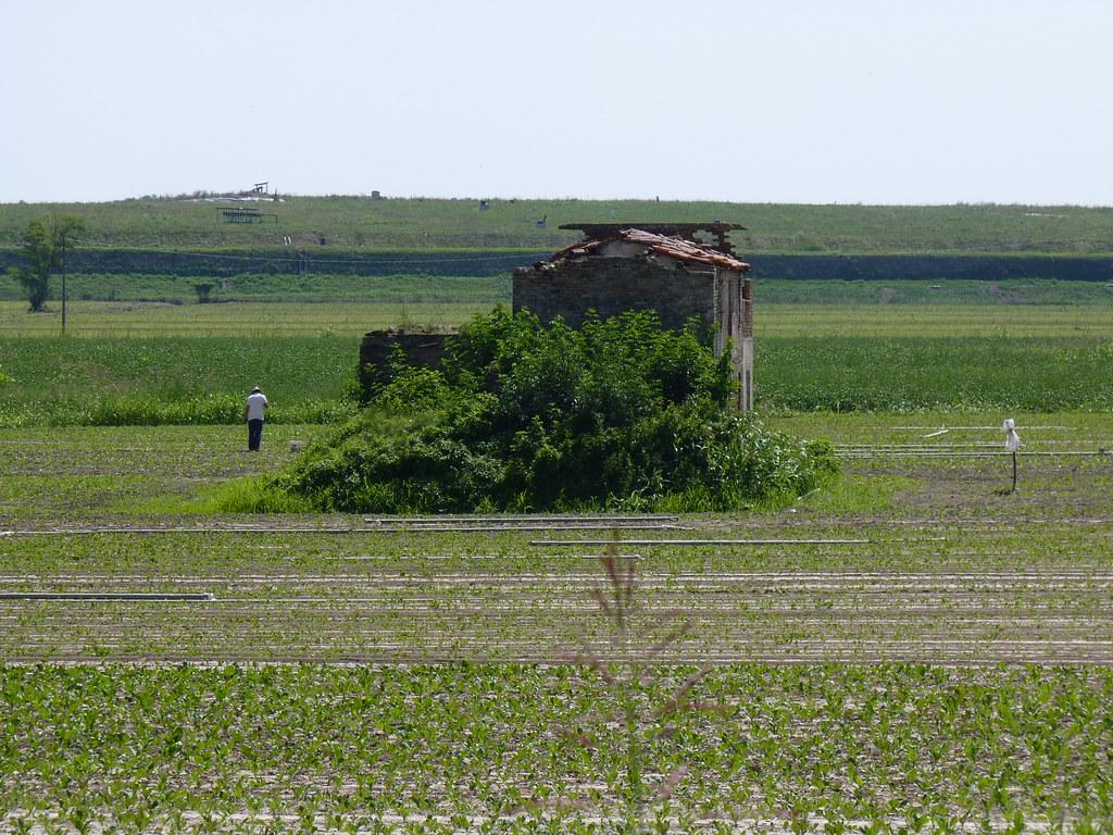 3+ paesaggio rurale Piovego Basso
