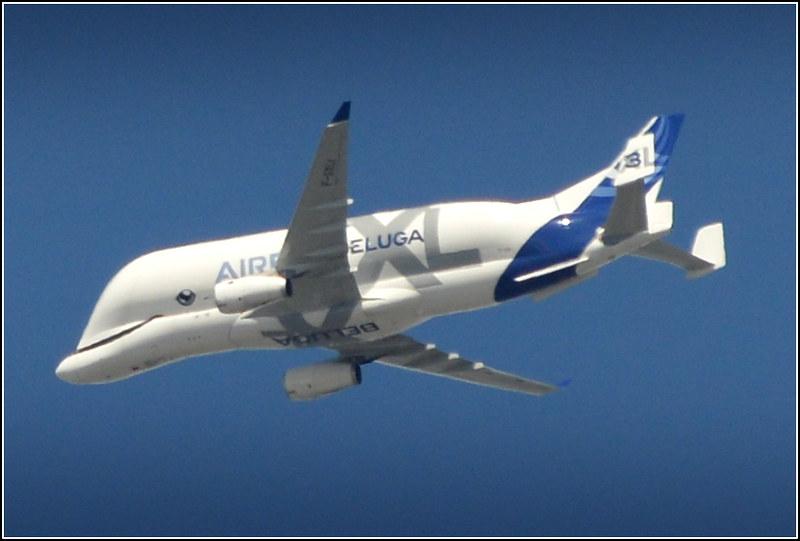 (Airbus Transport International) Airbus A330-743L Beluga XL (F.GXLI) Inbound Chester 16th June 2021