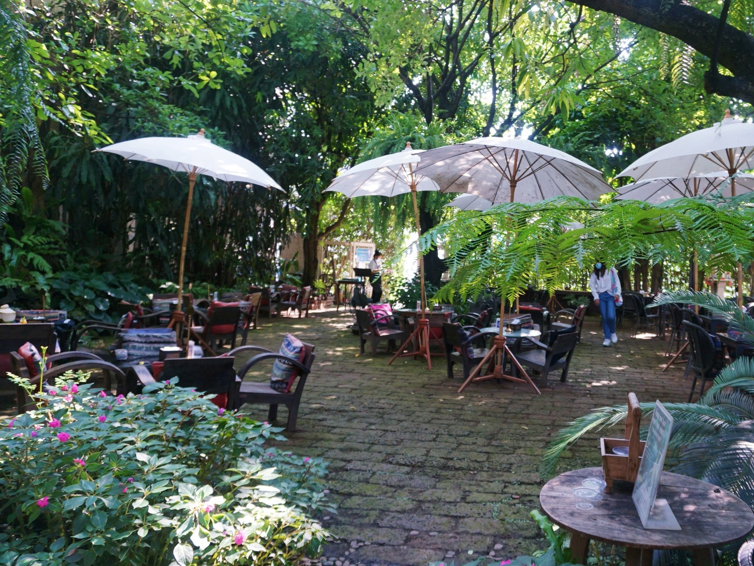Fern Forest Cafe Chiang Mai