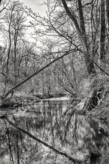 White Lick Creek