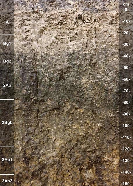 Southwest soil series