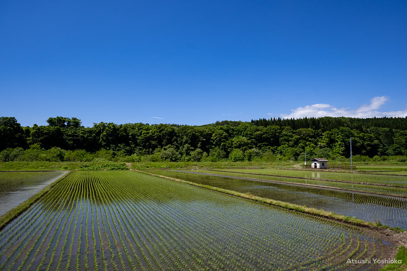 TAMRON 11-20mm F/2.8 Di III-A RXD Shooting in Akita