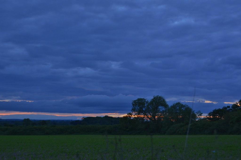 Evening walk 100621_DSC1606