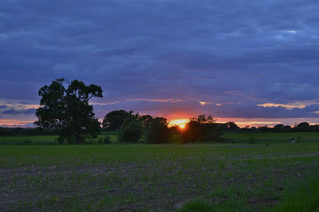 Evening walk 100621_DSC1602