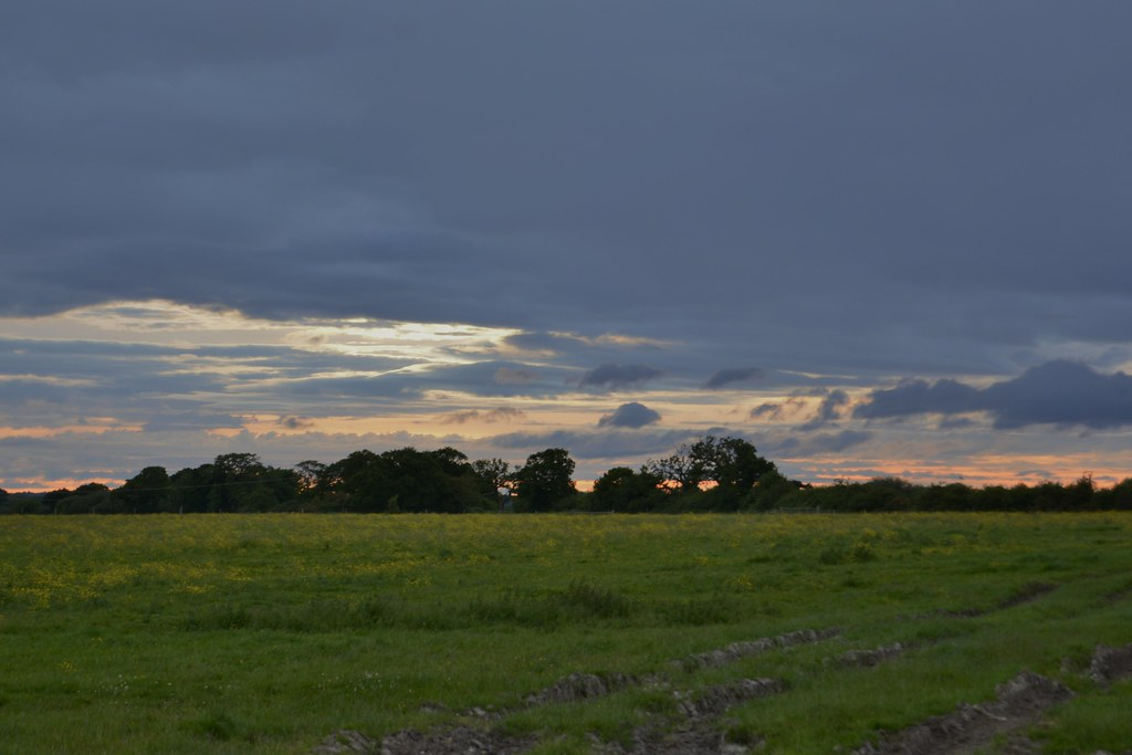 Evening walk 100621_DSC1600