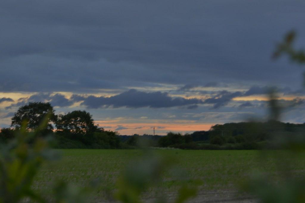Evening walk 100621_DSC1597