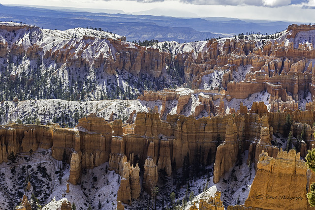 Natures artistry in Bryce Canyon, the colors, shapes, and forms are stunning