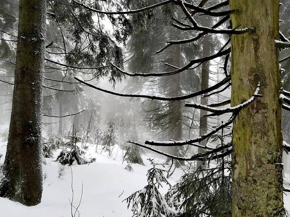 Macecha Krušné hory Tschechien foto 03