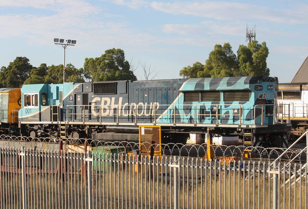 4226. CBH001 stabled at Midland 6-1-13 by David Arnold
