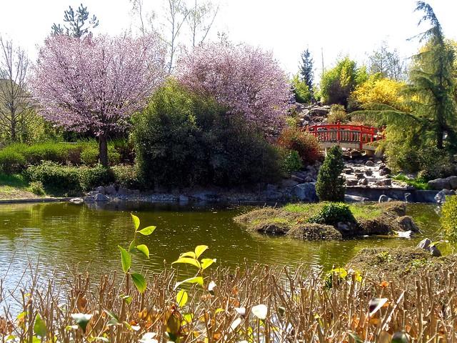 Dijon / Jardin japonais
