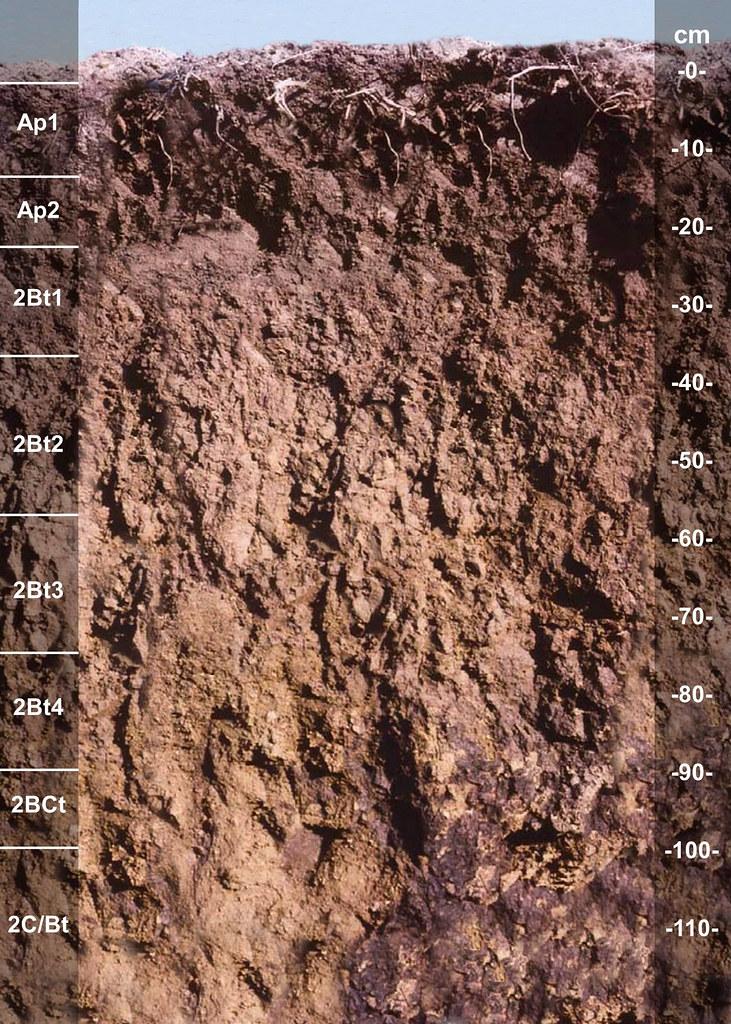 Wawaka soil series IN
