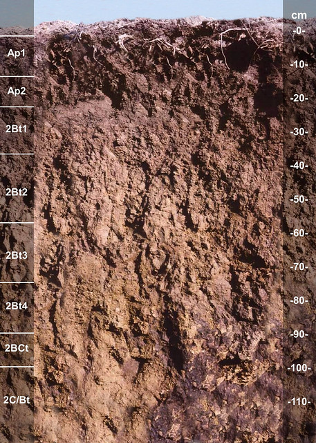 Wawaka soil series