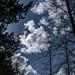 Sky Vi4w 2021 03 10 13