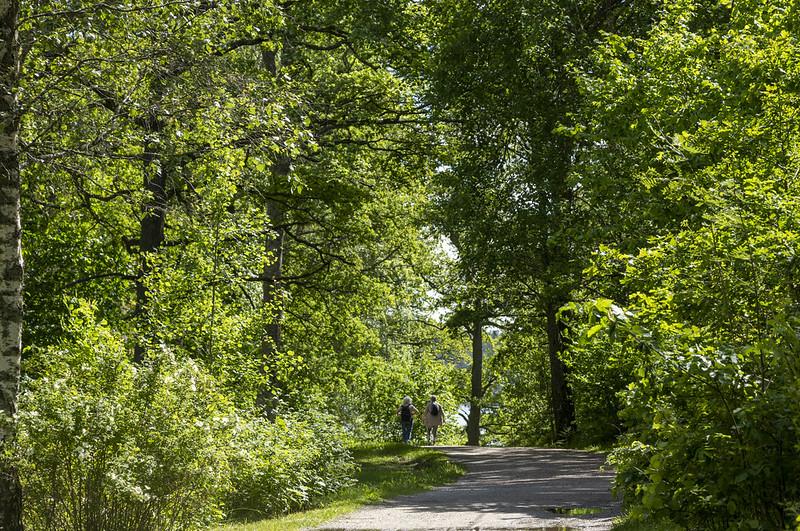 A green walk