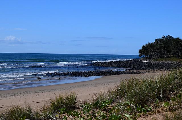 Mon Repos [southern end of beach]