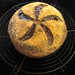 Bread Star