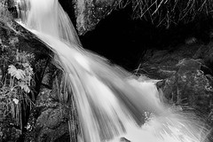 _7809030 Waterfall at Sagehen.jpg