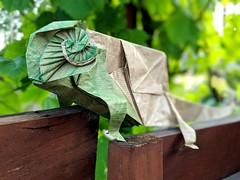 Chameleon by Kairo Nagayama