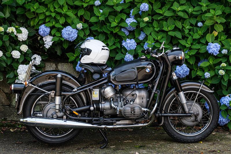 BMW R50 ( 1955-60 )