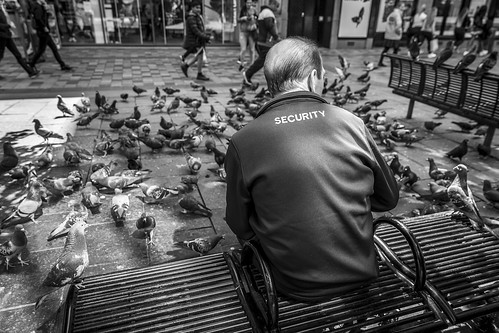 people pigeons streetphoto leanneboulton street urban candid perspective streetphotography streetlife faceless anonymous sociallandscape candidstreetphotography man male bird birds animal securityguard pigeon wildlife watching guard security vermin pests feral bench sitting flock feathers fun humorous humour juxtaposition detail texture depthoffield tone sunlight outdoors naturallight shade life city living humanity culture lifestyle scene human society canon wideangle 24mm canon5dmkiii ef2470mmf28liiusm white black blackwhite uk blackandwhite bw monochrome mono scotland glasgow