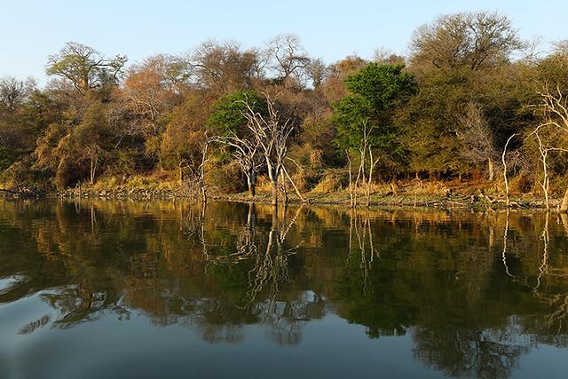Reflections on Dam lake Malilangwe - Zimbabwe