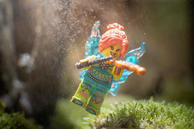 Fiddlin' fairy