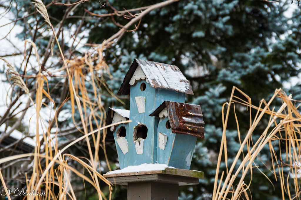 Bird house Bayfield Nancy Denham(2 of 3).jpg