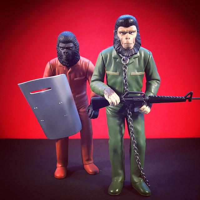 Caesar and Gorilla