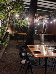 Tree in restaurant