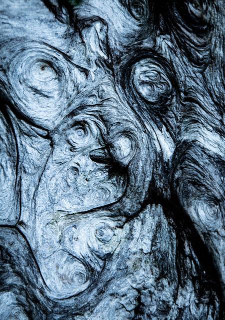 Picasso Meets Van Gogh Meets...?