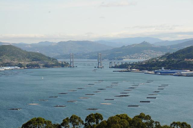 Puente de Rande. Vigo (Pontevedra)