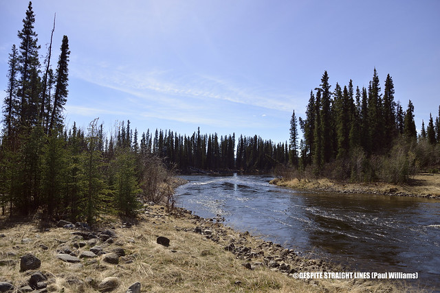 Smart River at altitude 797 metres off Alaska Highway 1 in British Columbia, Canada  -  (Published by GETTY IMAGES)