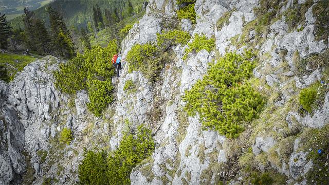 _DSC33042 Easy climbing on Mt. Jacksonstein at the ridge hike to Mt. Steineck / Upper-Austria