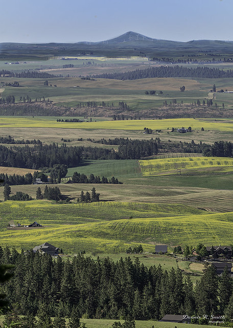 View from Rocks of Sharon to Steptoe Butte