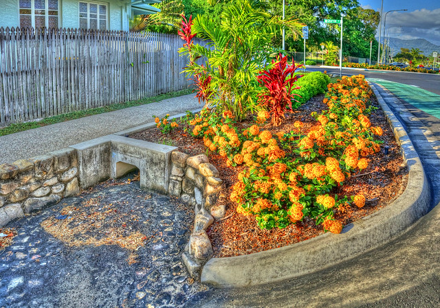 Bright New Floral World on the Edge of  a Roundabout - Oct 4, 2014