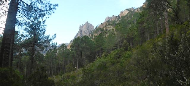 Sur le chemin Carciara - Paliri : Pta Cumpuleddu (photo Olivier Hespel)